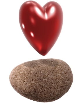 heart and a stone
